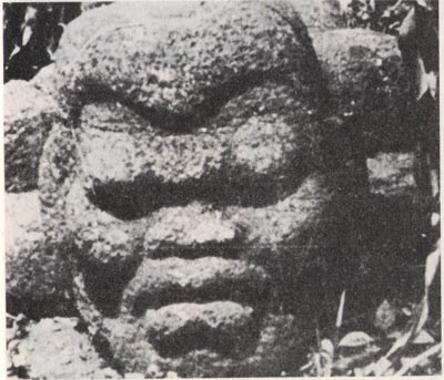 Who were the olmecs we know they not the mayans or aztecs were the builders of ancient american pyramids dozens of their enormous olmec heads have been found throughout publicscrutiny Image collections